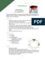 clase parasito 19 _ 11-01-12.pdf