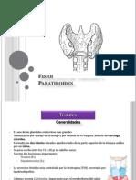 Fisiología de Tiroides y Paratiroides
