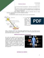 microbiología clase 10 _ 13-12-11.doc