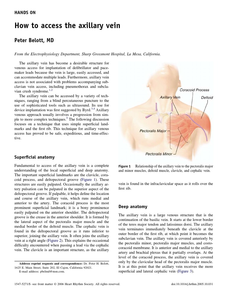 How Access Axillary Vein | Anatomical Terms Of Location | Vein