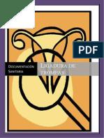 FPGS Documentación Sanitaria