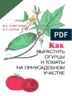 Sovetkina
