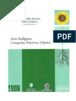 Arte Indigena. Categorias, Practicas, Objetos Bovisio y Penhos Intro