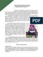 Programa General Santa María de Las Nieves