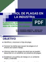 Control de Plaga Senla Industria 1