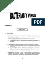 SEMANA 6 - Bacterias y Virus