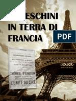 Articoli Francia