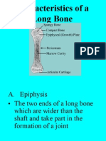 Characteristics of a Long Bone 2009 Revise