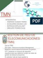 TMN -EXPOSICION -PPT