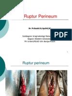 Ruptur Perineum Fk 2012