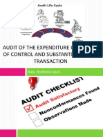 Audit of the Expenditure Cycle
