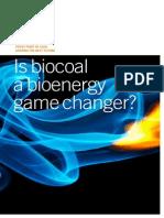0011 is Biocoal a Bioenergy Game Changer v2 Web