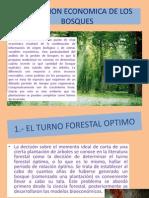 La Gestion Economica de Los Bosques