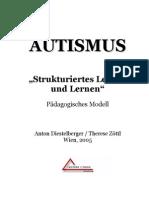 Autismus Gesamtdokumentation-Diestelberger 24.02.05