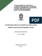 Astigmatismo Briceño, d 2013