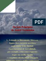 20090118PPT_principiodocere