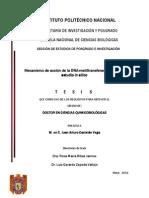 Tesis Maestria_in Silico