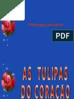 20090228PPT_tulipescoeurver