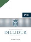 Dillidur Technical Information