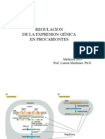 Regulacion I 2013