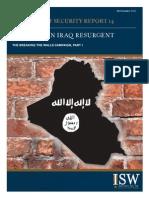Al Qada in Iraq Report