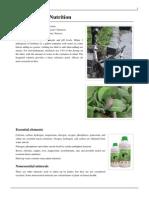 Hydroculture Nutrition