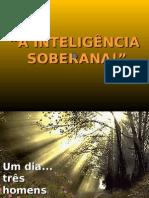 20090515PPT_inteligencia_oo