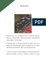 Libro de Microbiologia Version 1