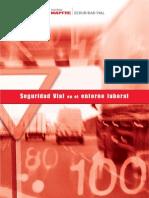 Seguridad Vial Entorno Laboral