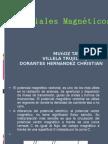 potenciales magneticos