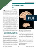 Molecular Insights into Human Brain Evolution (Bradbury 2005)