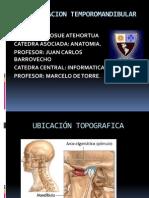 Articulacion Temporomandibular 1220448928498836 9