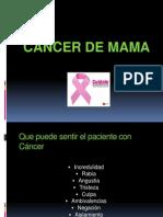 Charla Sobre Cancer