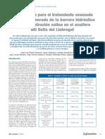 AREMA Artículo 2 Barrera Hidraulica Oct 09.pdf