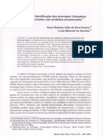 Chave Identi. Coleoptera Produtos Armazenados Lucia Massuti 2001