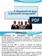 12. Grupul.definitii.tipologii