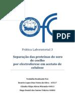 Prática Laboratorial 3