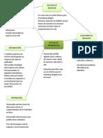 Diagrama Marketing Dirigido