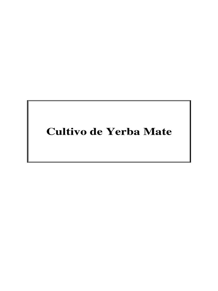Circuito Yerba Mate : Ruta de la yerba mate viaje de familiarizaciÓn pdf