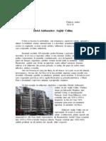 Eseu Iam PDF