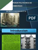 Biorreactor Fed Bacth