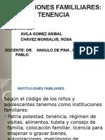 INSTITUCIONES FAMILILIARES