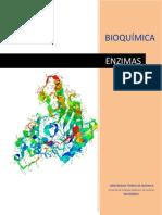 enzimas bioquimica (Javier Campoverde)