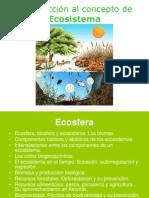 El Ecosistema 3