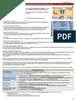SAP - Info - Terp10 - 5