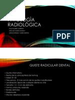 Radiologia Anatomia