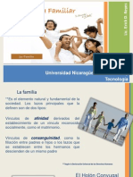 Sesión II -Psicoterapia Familiar- La Familia