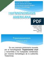 Seminario de Parasitologia3