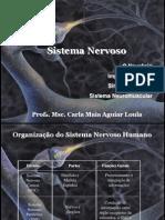 fisiologiadosistemanervosoesistemaneuromuscular-121110051236-phpapp01