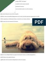 Las 31 mejores sensaciones del verano.pdf